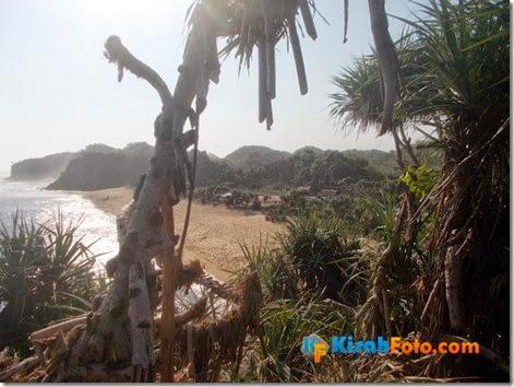 Tebing pantai watu kodok Drini_09