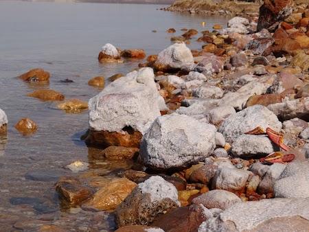 08. Sare la Marea Moarta.JPG