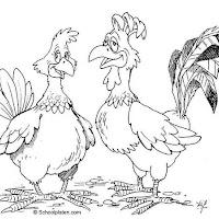 gallo-y-gallina-721.jpg