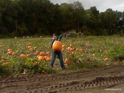 Bryce's pumpkin