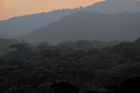 Costa Rica romantica: Rasarit deasupra Padurii Monteverde