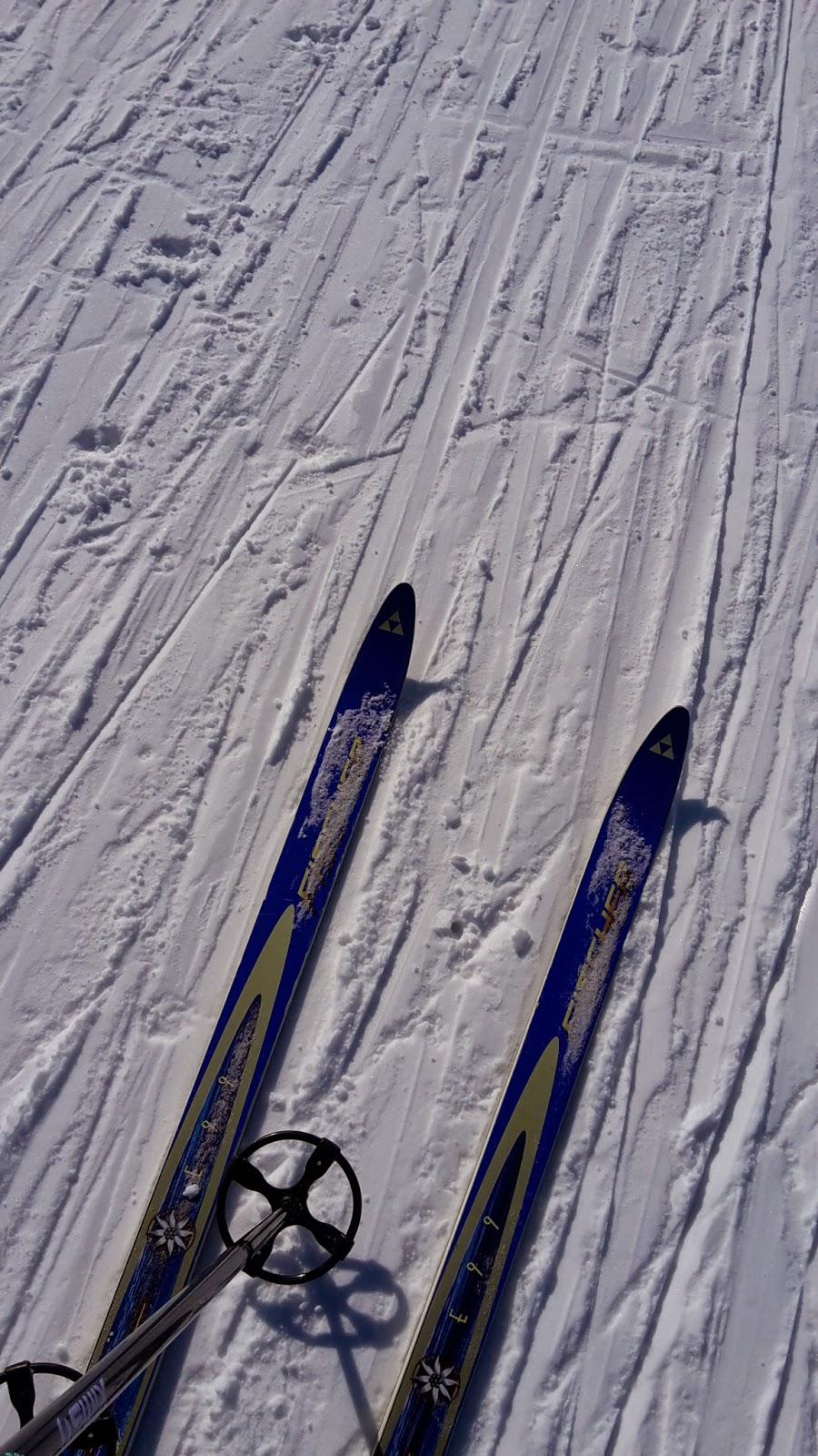 skidor idag