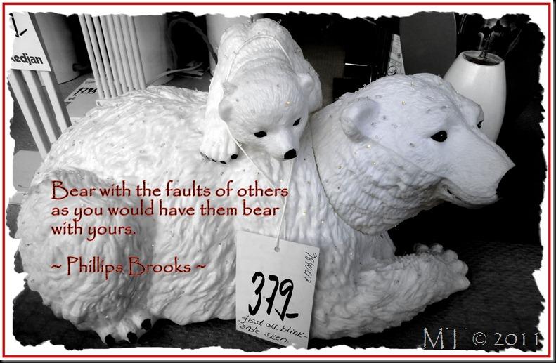 10_CIMG5979-1 bear