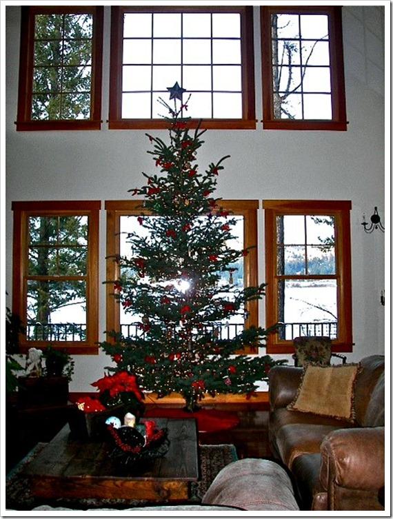 Montana Xmas tree 2 (2)
