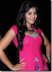 Actress Anjali at Settai Movie Audio Launch Photos