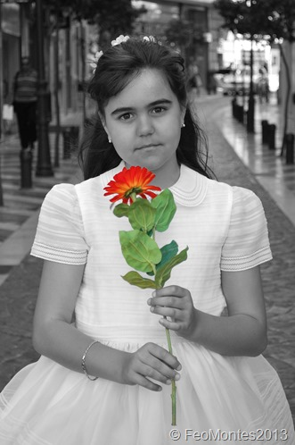 LARIOS FLOR COLOR
