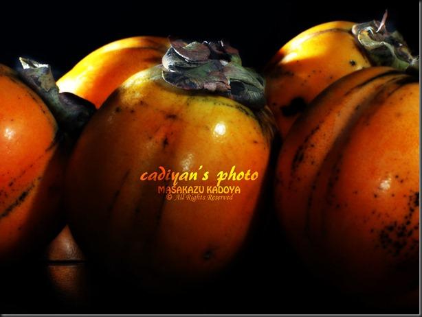 E-PL1_2012-10-16_011
