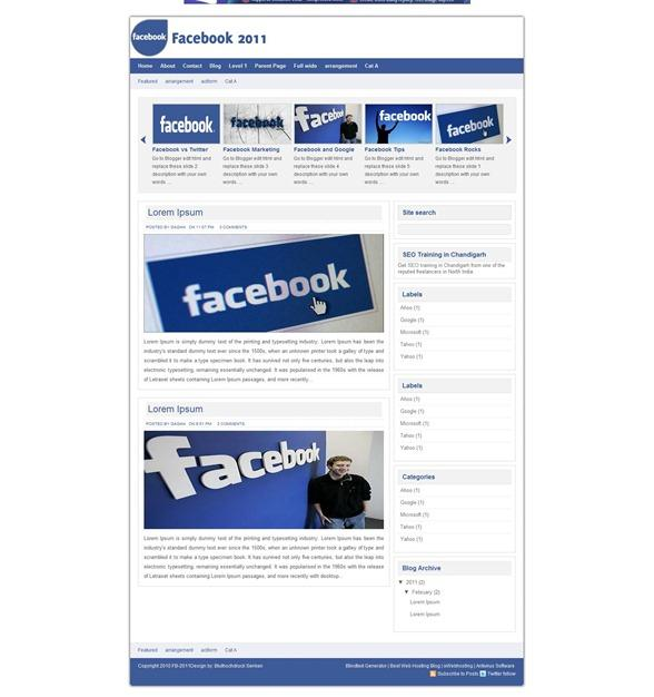 Google e facebook blogger template ipcei for Facebook disclaimer template