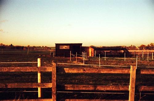 Horse-Land-3---XPRO