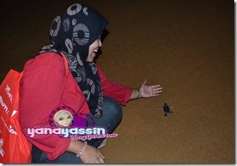 Batik302_DSC_2850cherating