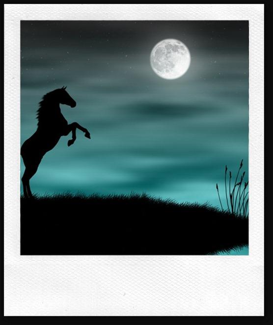 Black-Horse-Wallpaper-moonlight