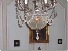 2005.08.18-025 lustre à poissons