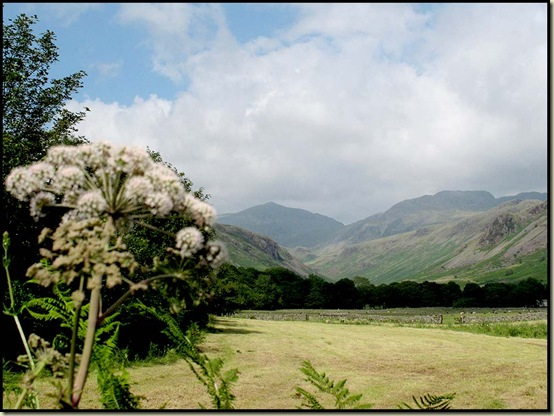 The view back up towards Bowfell, from the Hardknott Pass road