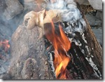 Samhain fire bone log
