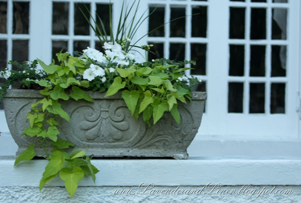 White Flower Box