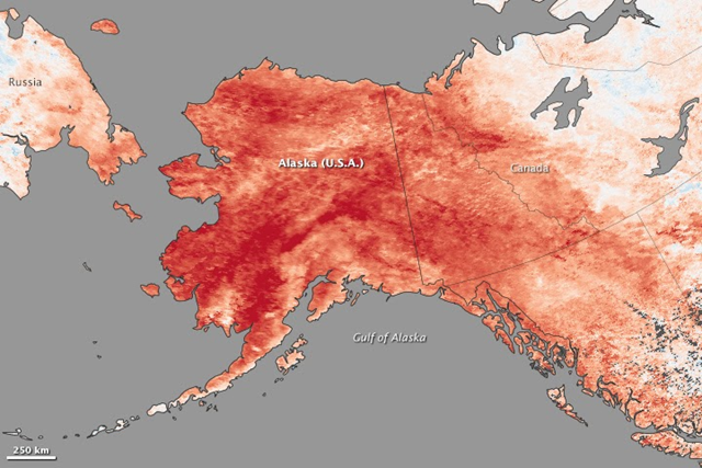 Record land surface temperature anomalies in Alaska for 23–30 January 2014. Based on data from the Moderate Resolution Imaging Spectroradiometer (MODIS) on NASA's Terra satellite, the map shows how 2014 temperatures compared to the 2001–2010 average for the same week. Graphic: NASA / MODIS