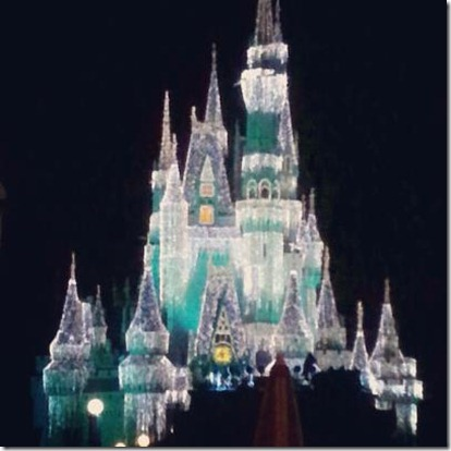2012-12-30 7 magic kingdom