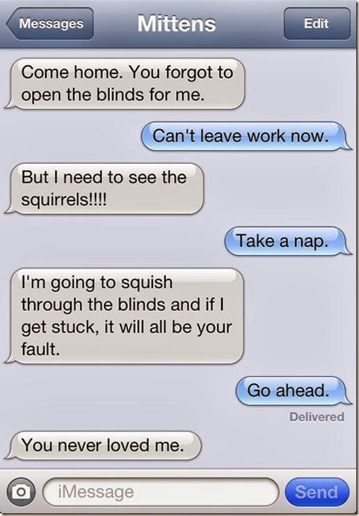 funny-texts-cat-7