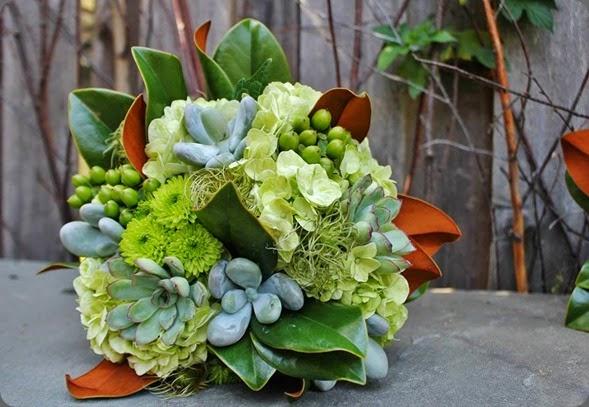 magnolia 1185822_10151893573358413_25609198_n la petite fleur