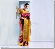 Bhavana_Bridal_Saree_Show (10)