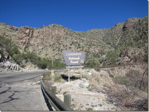 Tucson Drive & Mt. Lemmon 008