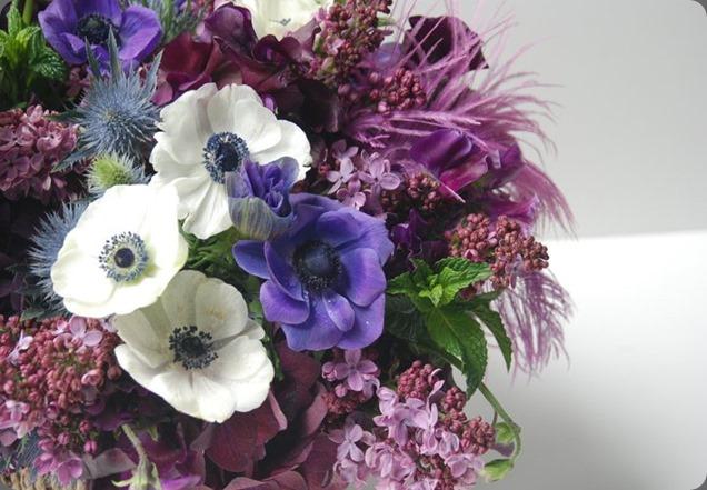 221938_216189301740324_159860124039909_898369_6501689_n  seed floral