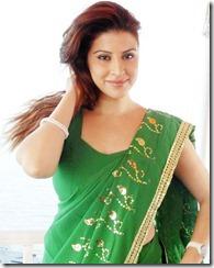 karishma-kotak-pic_hot in saree