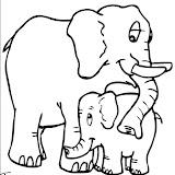 Elephant_Mom.jpg