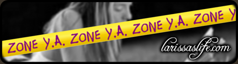 YA ZONE slide framed