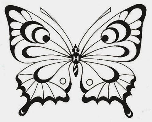desenhos e riscos borboleta