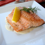 salmon steak in Oud-IJmuiden, Noord Holland, Netherlands