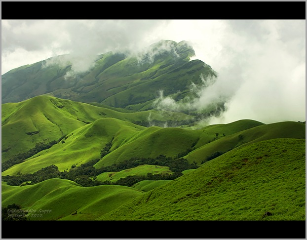 Kudremukh Shola forests