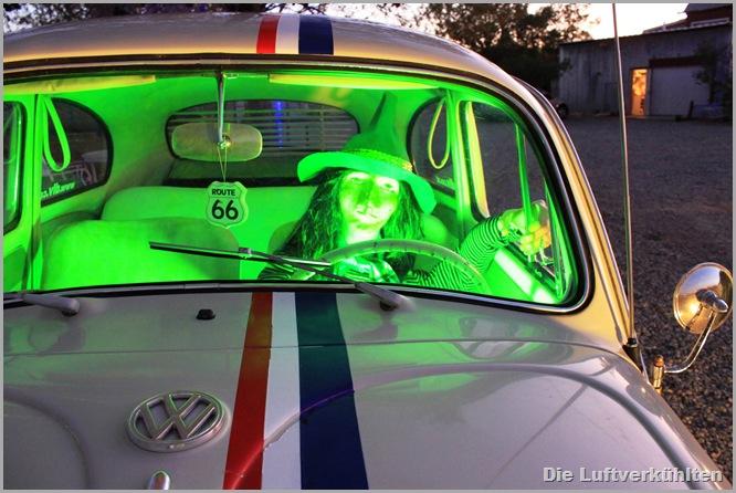 Herbie 019