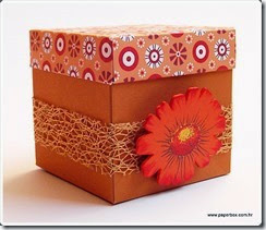 Kutija za razne namjene aa (23)