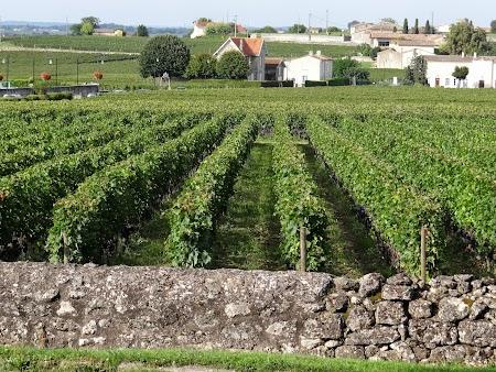 21. Vita de vie Bordeaux.JPG