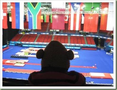 World trampolining championships Birmingham 2011