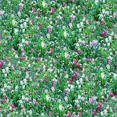 Flower-Meadow-Seamless-Pattern-1135106