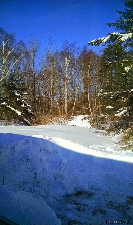 6. snowbank 2-6-15