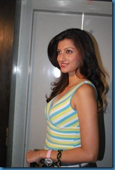 Telugu Actress Hamsa Nandini Stills