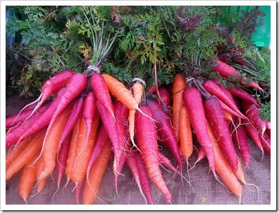 rainbow carrots taliaferro farm rhinebeck farmers market