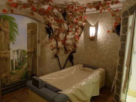 Imagini Burgenland: baie in vin in spa in Austria