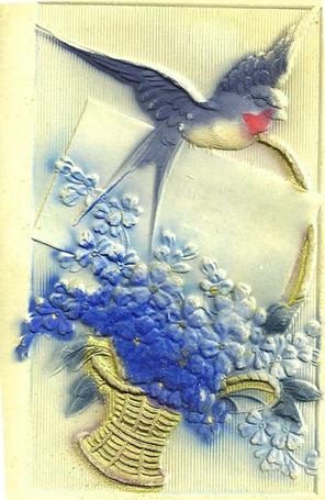 birdbasket