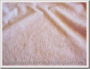 teddy fabric close up