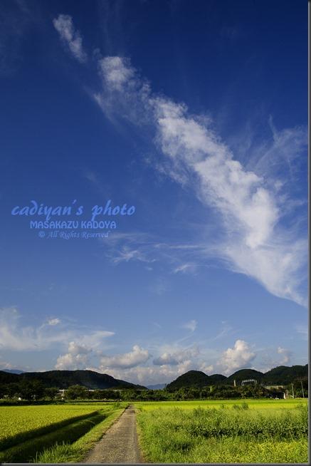 D700_2013-08-25_006