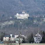 vaduz castle by day in Vaduz, Vaduz, Liechtenstein