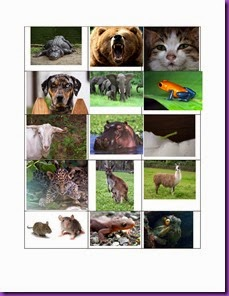 ABC animal sheet for letter find-page-001
