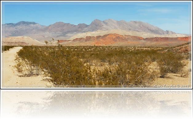 EFP-Gold Butte Landscape-2