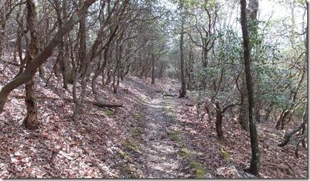 Trail mcclure gap Dixie grits