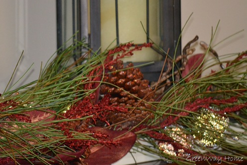 Holiday Vignettes 007