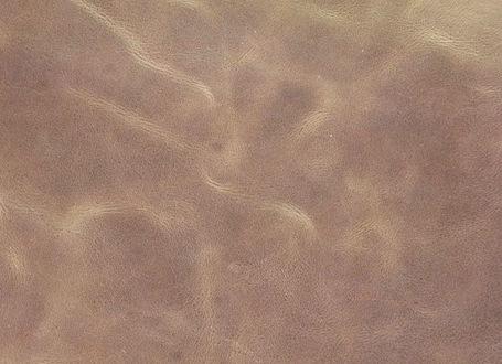 Мраморная кожа вблизи